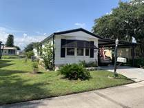Homes for Sale in The Lakes At Countrywood, Plant City, Florida $23,500
