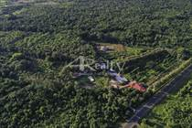 Farms and Acreages for Sale in Southern Highway, Toledo, Toledo $5,950,000