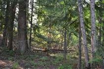 Lots and Land for Sale in 6 Mile, Nelson, British Columbia $299,000