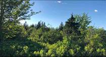 Lots and Land for Sale in Malagash Point, Nova Scotia $36,000