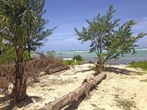Lots and Land for Sale in Puerto Morelos, Quintana Roo $350,000