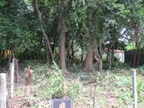 Lots and Land for Sale in Playa Potrero, Guanacaste $39,500
