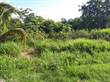 Lots and Land for Sale in San Ignacio, Cayo $29,000