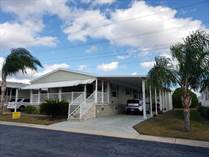 Homes for Sale in Serendipity Mobile Home Park, Clearwater, Florida $95,900