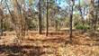 Lots and Land for Sale in Royal Highlands Unit 8, Weeki Wachee, Florida $10,900