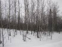 Lots and Land for Sale in Onoway, Alberta $99,900