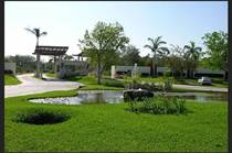 Lots and Land for Sale in Playa del Carmen, Quintana Roo $145,000