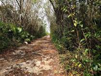 Lots and Land for Sale in Cancun, Quintana Roo $1,500,000