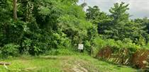Lots and Land for Sale in Bo. Pueblo, Moca, Puerto Rico $35,000