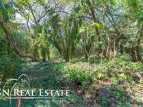 Lots and Land for Sale in Nosara, Guanacaste $58,000