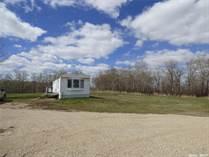 Homes for Sale in Esterhazy, Fertile Belt Rm No. 183, Saskatchewan $230,000