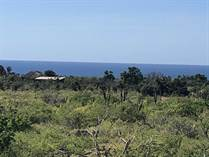 Lots and Land for Sale in El Pescadero, Baja California Sur $1,200,000
