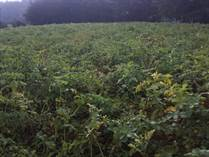 Lots and Land for Sale in Nyandarua, Simbara  KES5,000,000