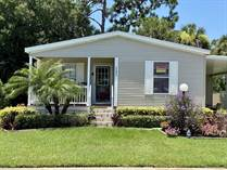 Homes for Sale in Island Lakes, Merritt Island, Florida $145,500