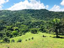 Farms and Acreages for Sale in Lagunas, Dominical, Puntarenas $275,000