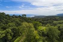 Lots and Land for Sale in Uvita, Puntarenas $675,000
