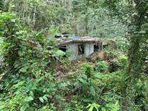 Lots and Land for Sale in Guaraguao, Puerto Rico $27,000