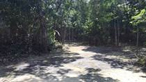 Lots and Land for Sale in Playa del Carmen, Quintana Roo $363,225