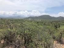 Lots and Land for Sale in Cerritos , La Paz, Baja California Sur $50,000
