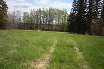 Lots and Land for Sale in Buck Lake, Alberta $149,500
