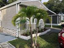 Homes for Sale in High Point Village, Clearwater, Florida $13,000