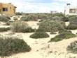 Lots and Land for Sale in Sonora, Puerto Penasco, Sonora $35,990