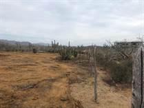 Lots and Land for Sale in Cerritos Beach, Baja California Sur $49,950
