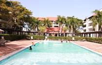 Condos for Rent/Lease in Punta Cana Village, Punta Cana, La Altagracia $1,000 monthly