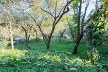 Lots and Land for Sale in Nosara, Guanacaste $109,000