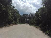 Lots and Land for Sale in Puerto Morelos, Quintana Roo $1,350,000