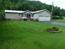 Homes for Sale in Delbarton, West Virginia $139,000