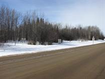 Lots and Land for Sale in Darwell, Alberta $29,900