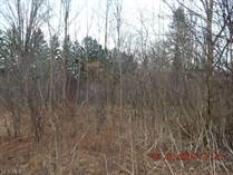 Lots and Land for Sale in Novelty, Ohio $110,000