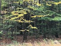 Lots and Land for Sale in Pocono Pines, Pennsylvania $99,000