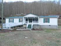 Homes for Sale in Lynco, Oceana, West Virginia $85,000
