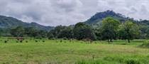 Lots and Land for Sale in Ojochal, Puntarenas $100,000