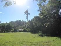Lots and Land for Sale in Cabrera, Maria Trinidad Sanchez $125,000