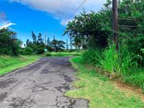 Lots and Land for Sale in Naalehu, Hawaii $80,000