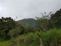 Farms and Acreages for Sale in Savegre , Quepos, Puntarenas $199,000