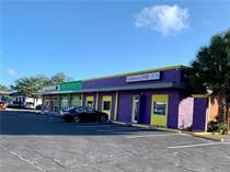 Commercial Real Estate for Sale in Florida, ST PETERSBURG, Florida $3,500