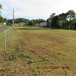 Lots and Land for Sale in Bo. Arenales Altos, Isabela, Puerto Rico $48,000