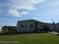 Homes for Sale in Brookridge, Florida $149,999