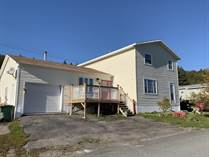 Homes for Sale in Bay L'Argent, Newfoundland and Labrador $98,500