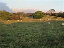 Lots and Land for Sale in Cañas, Guanacaste $60,000,000