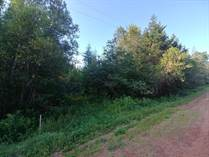 Homes for Sale in Abney, Prince Edward Island $63,800