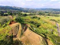 Lots and Land for Sale in Esterillos Oeste , Quebrada Amarilla, Puntarenas $69,000