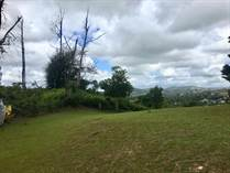 Homes for Sale in Cidra, Puerto Rico $120,000