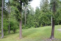 Lots and Land for Sale in Eagle Bay, British Columbia $125,000