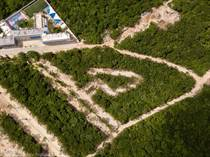 Lots and Land for Sale in La Joya , Playa del Carmen, Quintana Roo $122,448