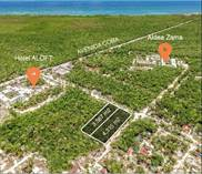 Lots and Land for Sale in Tulum, Tulum, Coba Ave, Quintana Roo $2,481,125